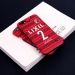 2018 Kashima Antlers Jersey phone cases